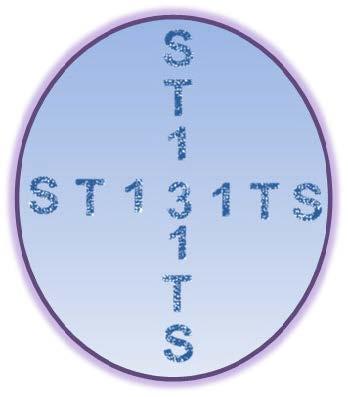 ST131TS project logo